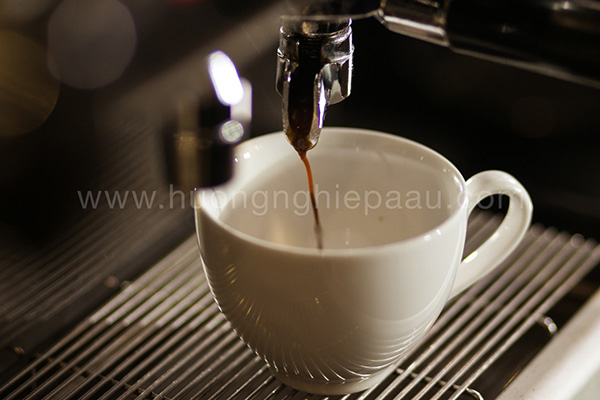 Chiết xuất cafe Espresso